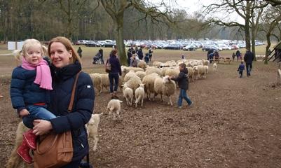 Tussen de schapen, veilig bij mama op de arm