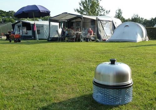 Cobb bbq camping