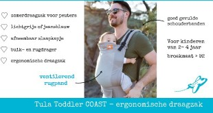 Tula Toddler Coast