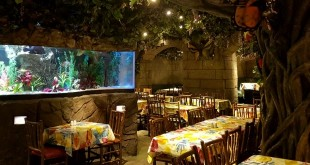 Rainforest Cafe Londen