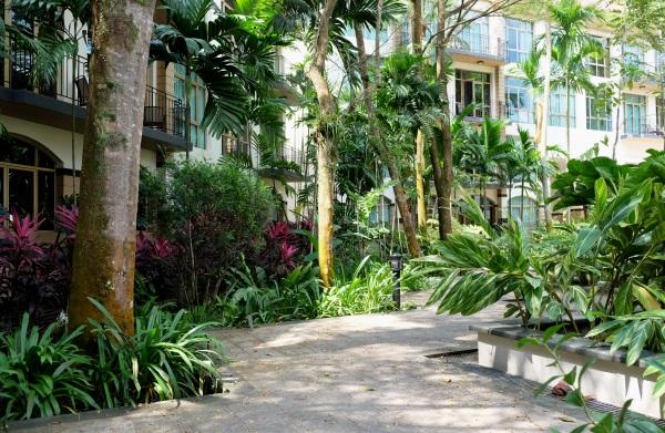 Treetops apartments gardens