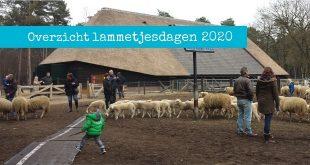 Lammetjesdagen 2020