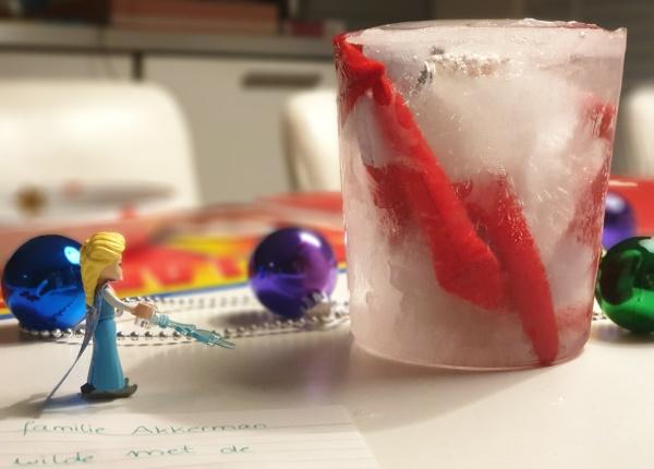 Elf on the Shelf inspiratie