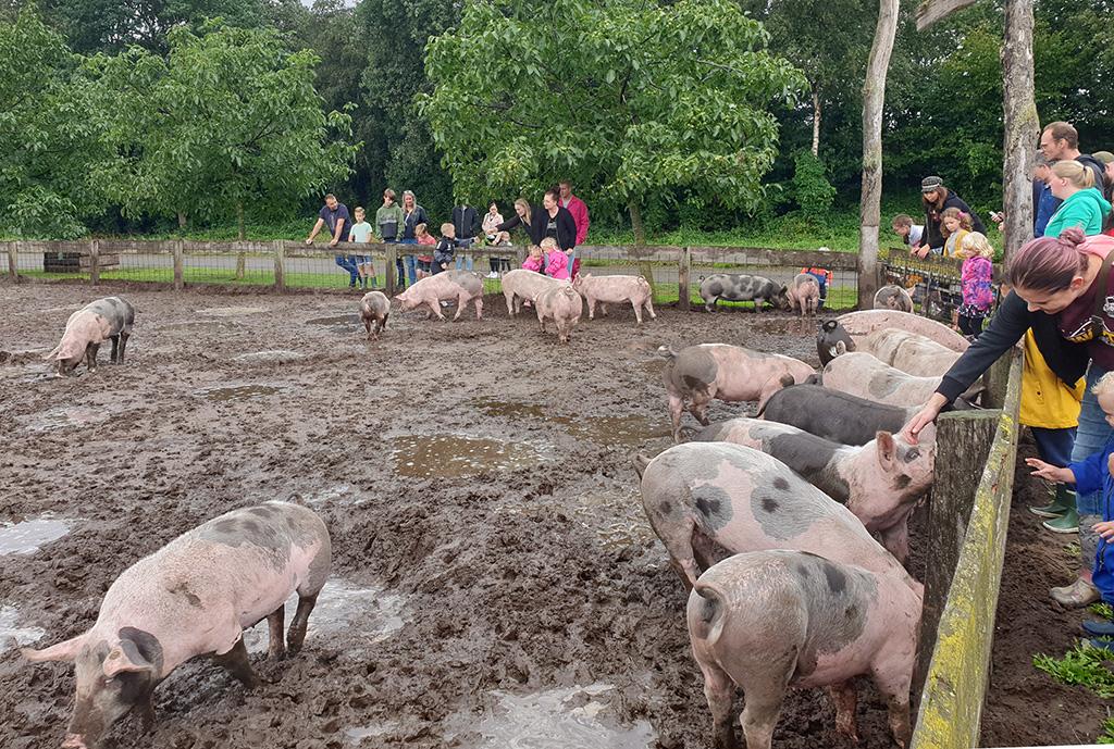Piggys palace bathmen modder